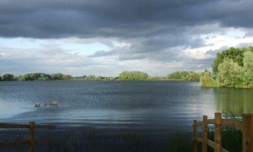 Zdjecie ANGLIA / Cambridgeshire / Fen Drayton Lakes / Fen Drayton Lake 5