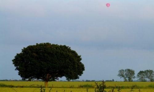 Zdjęcie ANGLIA / Cambridgeshire / Fen Drayton Lakes / Fen Drayton Lake 10