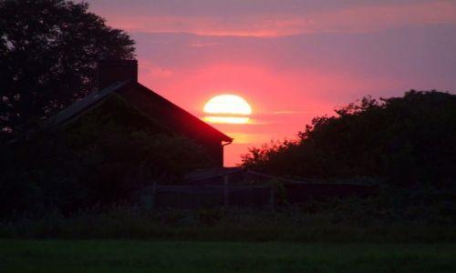 Zdjęcie ANGLIA / Cambridgeshire / Fen Drayton Lakes / Fen Drayton Lake16