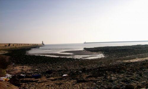 Zdjecie ANGLIA / Północna Anglia / Tynemouth / Wybrzeże