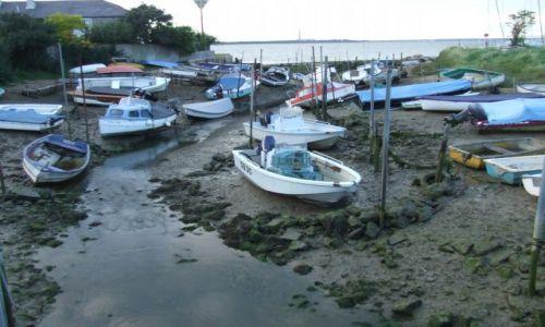 Zdjęcie ANGLIA / Isle Of White / poludniowa anglia / odplyw