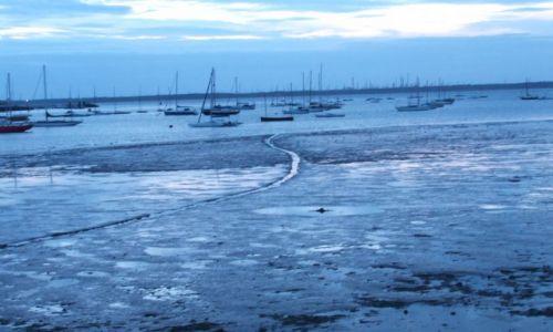 Zdjęcie ANGLIA / Isle Of White / poludniowa anglia / odpływ