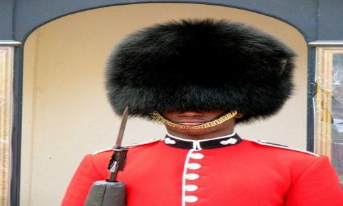 Zdjęcie ANGLIA / Londyn / Pałac Buckingham / Czy on coś widzi?