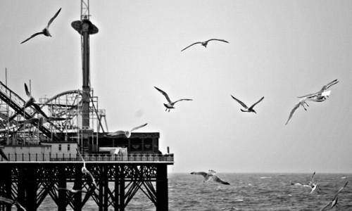 Zdjęcie ANGLIA / Essex / Brighton / molo Palace Pier