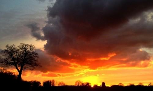 Zdjęcie ANGLIA / Londyn / Ottershaw / Wschód słońca