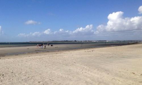 Zdjęcie ANGLIA / Worthing / Worthing / Spacery plażą