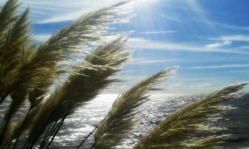 Zdjecie ANGLIA / - / Clacton-on-Sea / nad morzem