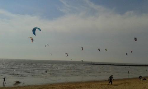 Zdjęcie ANGLIA / Essex / Clacton-on-Sea / pływamy czy latamy?