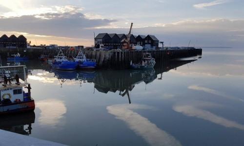 Zdjęcie ANGLIA / hrabstwo Kent / Whitstable town / symbioza