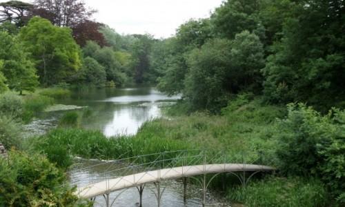 Zdjecie ANGLIA / Oxfordshire / Blenheim Palace - Park / kładka