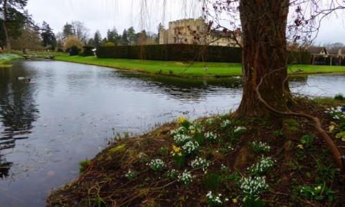 Zdjecie ANGLIA / Kent / Hever Castle / wiosna 17