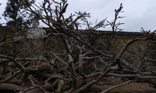 Zdjecie ANGLIA / Kent / Hever Castle / tajemniczy ogro