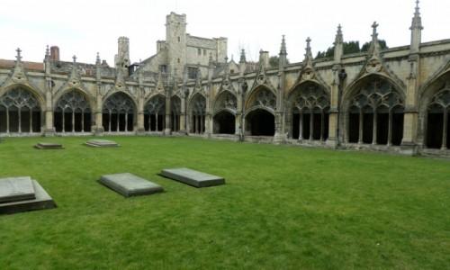 ANGLIA / Canterbury  / Canterbury  / Arkady
