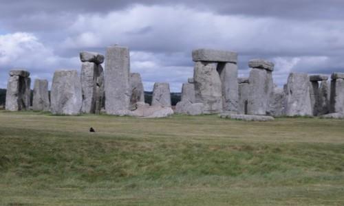 Zdjecie ANGLIA / Wiltshire,  / Stonehenge /  wrona