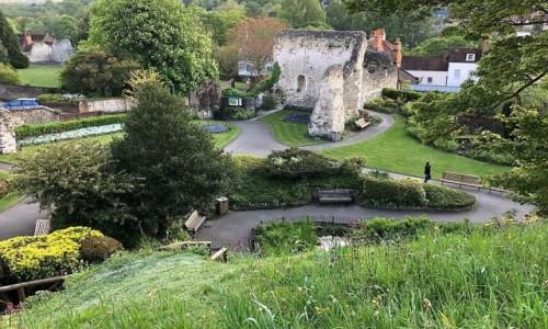 Zdjecie ANGLIA / Chrabstwo surrey / Guilford / W pobliżu zamku