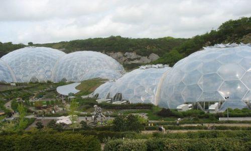 Zdjecie ANGLIA / Cornwall / Eden Project / Nawet na ja�owe