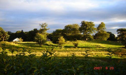 Zdjęcie ANGLIA / Cumbria / Windermere / sunset farewell