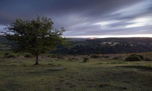 Zdjęcie ANGLIA / Devon / Dartmeet / Dartmoor / Widok na Dartmeet