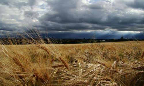 Zdjecie ANGLIA / okolice Wakefield / Wakefield / nadciaga letnia burza ?