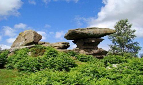 Zdjecie ANGLIA / North Yorkshire / droga B 6265 miedzy Ripon a Skipton / formy skalne  Brimham Rocks