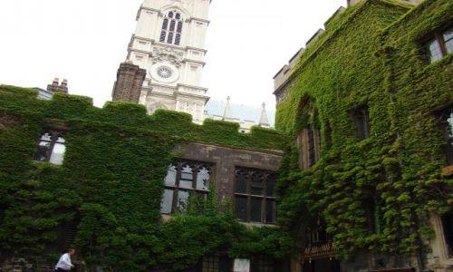 Zdjecie ANGLIA / Londyn / Westminster Abbey  / Bluszcz