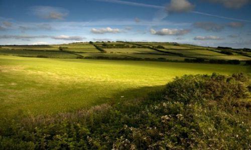 Zdjęcie ANGLIA / Devon / Park Narodowy Exmoor / Exmoor