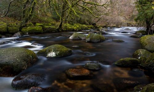 Zdjęcie ANGLIA / Devon / Dartmoor / Dartmeet / Wschodnia odnoga rzeki Dart