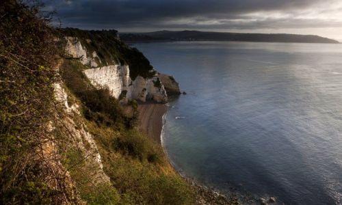 Zdjęcie ANGLIA / Devon / Beer / Biale klify