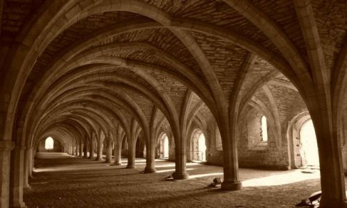 Zdjecie ANGLIA / Yorkshire / Fountains Abbey / The Cellarium