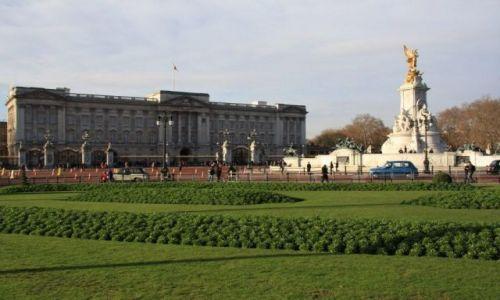 Zdjęcie ANGLIA / brak / Londyn  / Buckingham Palace