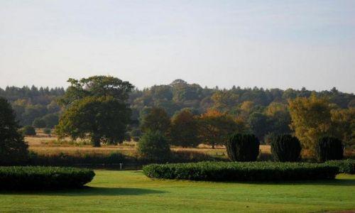 Zdjecie ANGLIA / Notthingamshire / Clumber Park / niedziela w Clumber Park