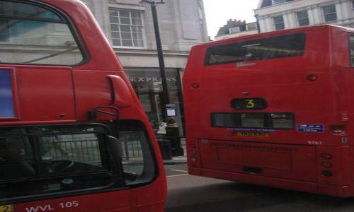 Zdjecie ANGLIA / brak / Londyn / Double-decker'y