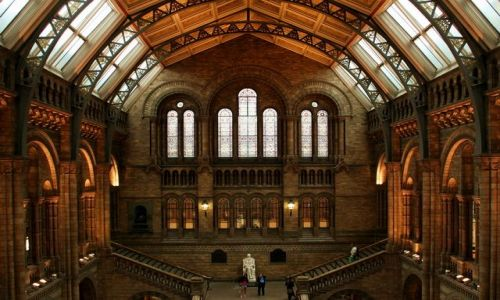 ANGLIA / Londyn / Natural History Museum / Muzeum Historii Naturalnej