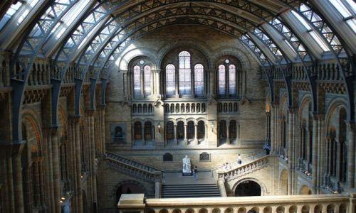 Zdjecie ANGLIA / - / Londyn /  W muzeum.Pomnik Darwina
