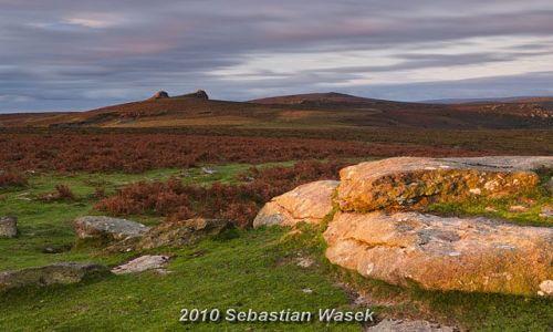 ANGLIA / Devon / Dartmoor / Haytor / Poranek