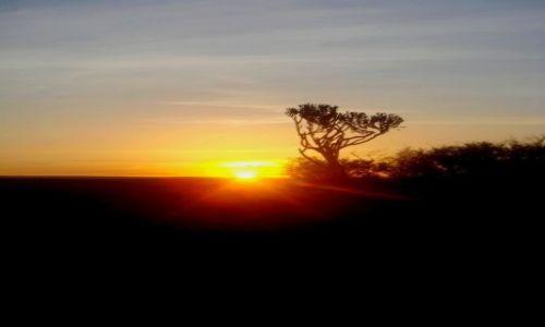 Zdjęcie ANGLIA / Cornwall / Downderry / sunrise