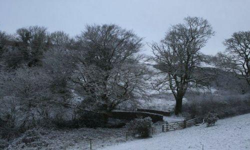 Zdjecie ANGLIA / Devon / Dartmouth / śnieg w Dartmou