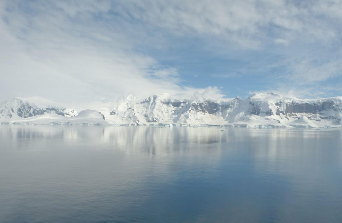 Zdjęcia: Anvers Island, Antarktyda, Wyspa Anvers, ANTARKTYDA
