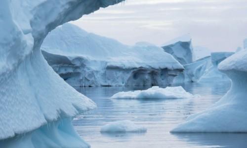 Zdjęcie ANTARKTYDA / Arctic Peninsula / Cmentarzysko gór lodowych / TWORY LODOWE