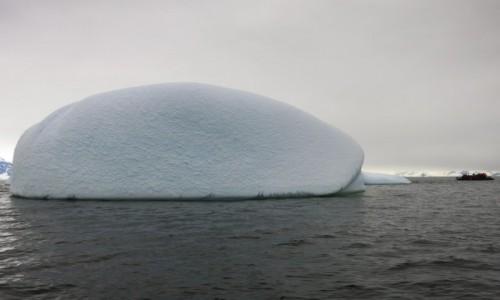 Zdjęcie ANTARKTYDA / Okolice Ukraińskiej stacji badawczej Vernadsky / Antarktyda / Małe i duże
