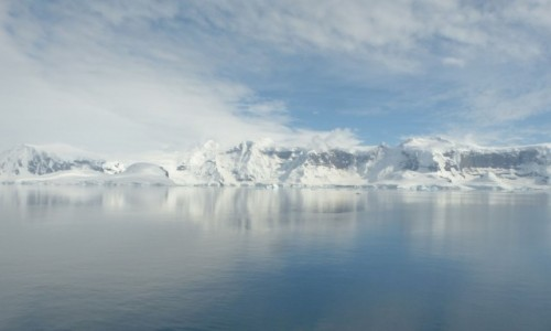 Zdjecie ANTARKTYDA / Antarktyda / Anvers Island / Wyspa Anvers