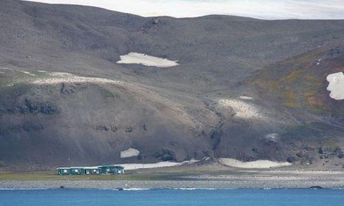 Zdjecie ANTARKTYDA / South Shetland Islands / South Shetland Islands / Stacja USA COPA