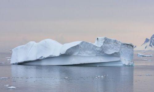Zdjęcie ANTARKTYDA / Polwysep Antarktyczny / polwysep antarktyczny / antarktyda
