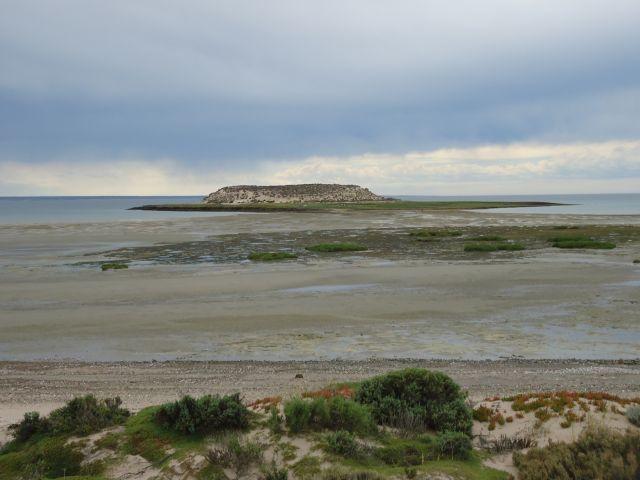 Zdjęcia: Półwysep Valdes, Chubut, Isla de los Pajaros, ARGENTYNA