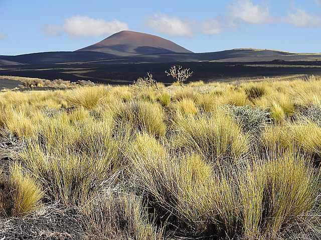 Zdjęcia: Reserva Payunia, Mendoza, Wulkany Payuni, ARGENTYNA