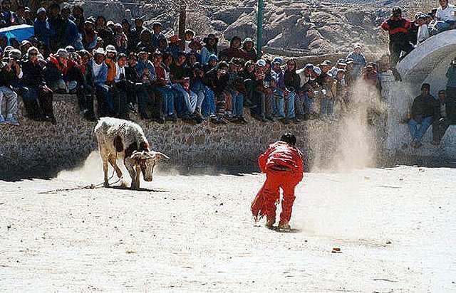 """Zdjęcia: Casabindo - po mszy i po procesji  na placu przed kosciolem odbywa sie """"corrida, walka z b, Puna czyli Altiplano, Magiczna Puna, ARGENTYNA"""