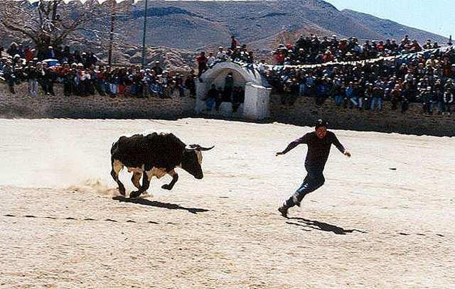 """Zdjęcia: Casabindo (3860 mnpm) - fragm. """"corridy""""  na czesc Wniebowstapienia NMP, andyjska tradycja, Puna czyli Altiplano, Magiczna Puna, ARGENTYNA"""