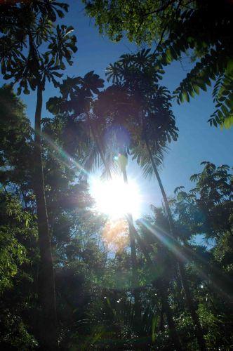 Zdjęcia: gdzie nad parana, światłość, światłość widzę!, ARGENTYNA