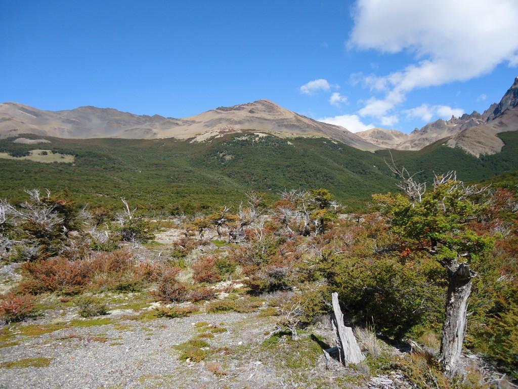 Zdjęcia: PN Los Glaciares (cz. północna), Santa Cruz (Patagonia), Szlak pod Cerro Torre ..., ARGENTYNA