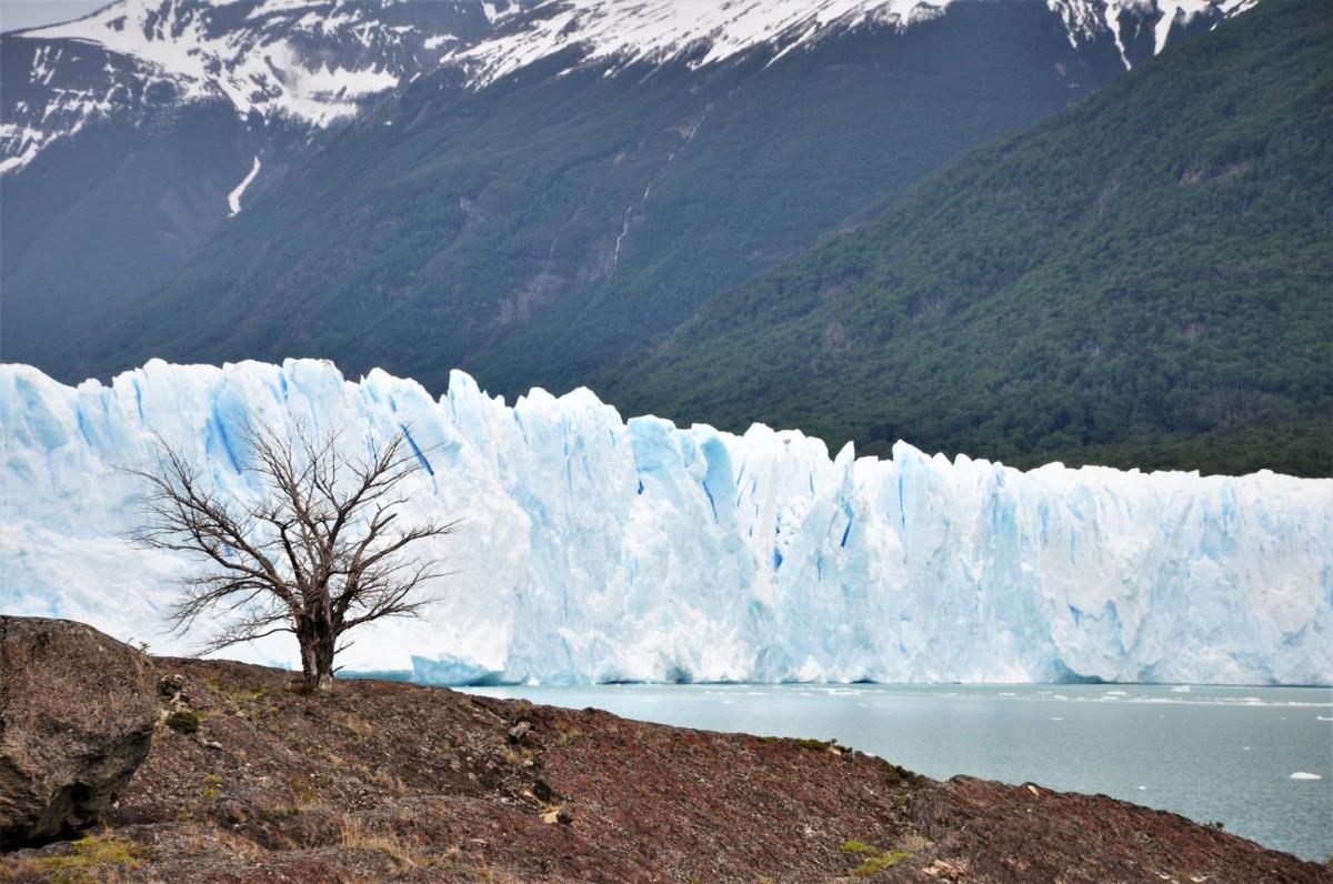 Zdjęcia: Parque Nacional Perito Moreno, Santa Cruz, Parque Nacional Perito Moreno, ARGENTYNA